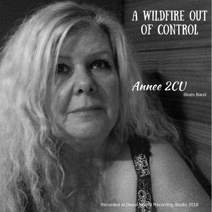 Annee 2CU Blues Band requires Experienced Guitarist